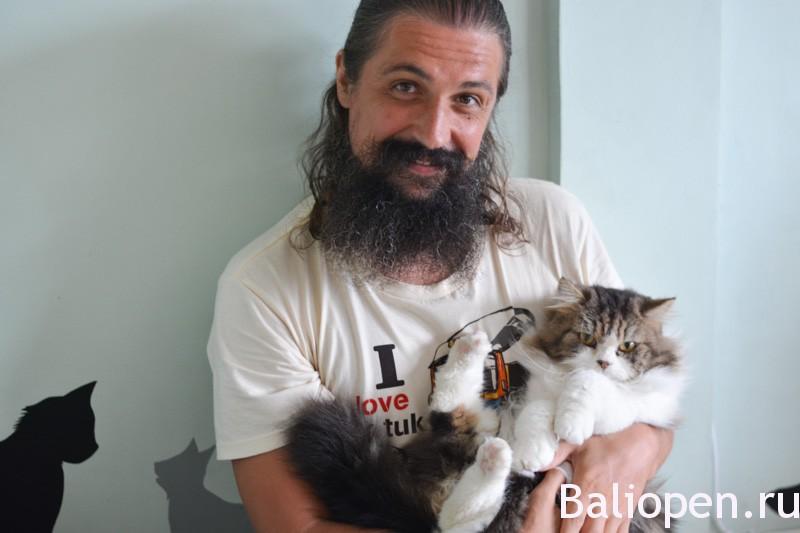 Кошачье кафе в Убуде (Cats Cafe Ubud)