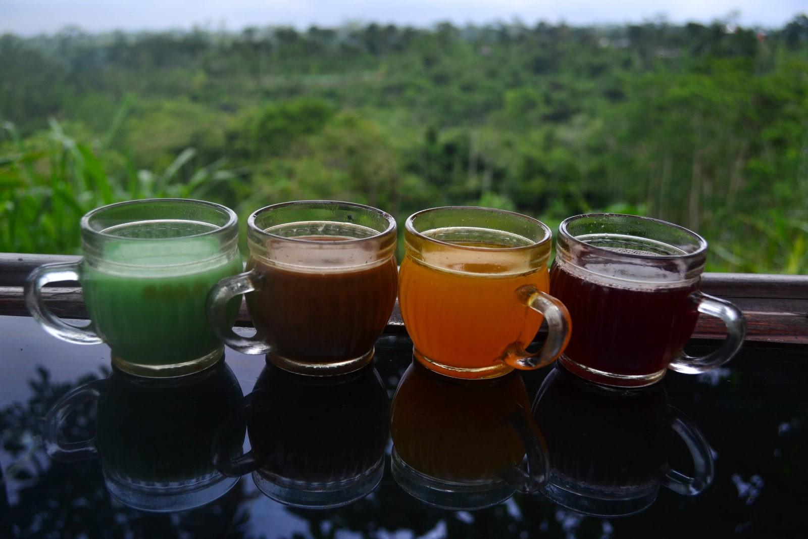 Кофейные плантации на Бали, где можно увидеть лювака?