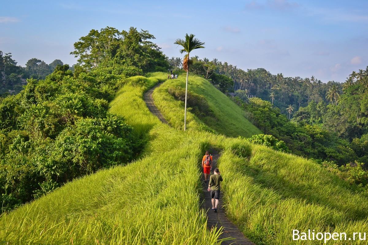 Как попасть на Бали сейчас? Электронная виза в Индонезию!