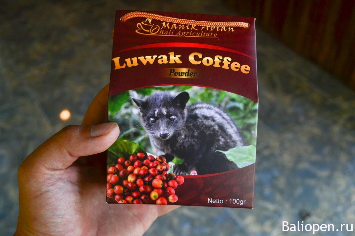 Кофе лювак - самый дорогой кофе в Мире